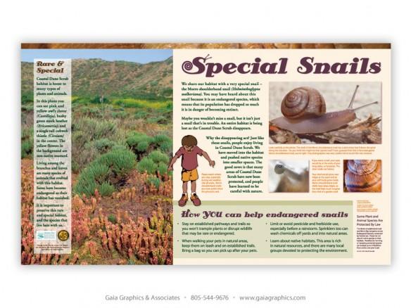 SAN LUIS OBISPO COUNTY Environmental Planning Department ~ Los Osos and Baywood Park ~ 36