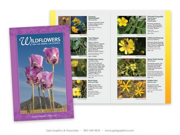 CITY of SAN LUIS OBISPO ~ Wildflower Book ~ 5.5