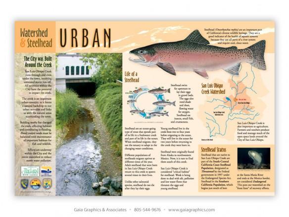 THE LAND CONSERVANCY OF SAN LUIS OBISPO COUNTY ~ San Luis Obispo Creek ~ 36