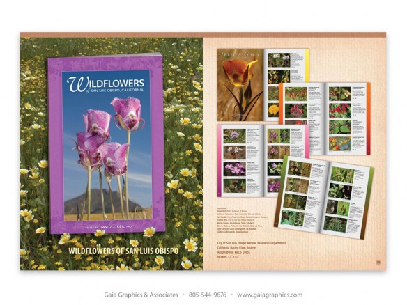 WILDFLOWER BOOK ~ City of San Luis Obispo Natural Resources and California Native Plant Society, SLO Chapter (pp 32-33)