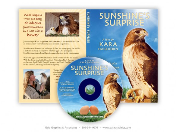 KARA & SUNSHINE ~ Sunshine's Surprise CD and CD case